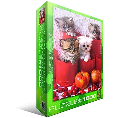 Kitten in Pot Puzzle, 1000 Pieces