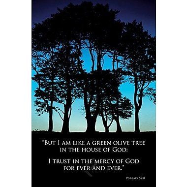 Olive Tree Poster, 36