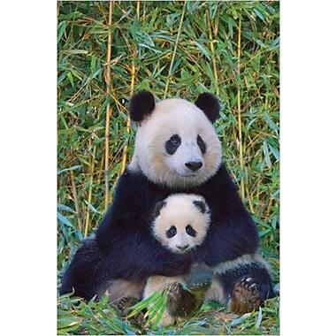 Panda And Baby Poster, 24