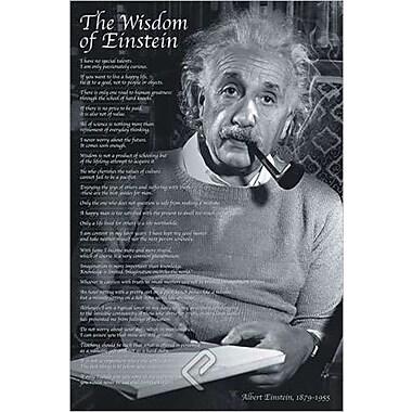 The Wisdom of Einstein Poster, 36