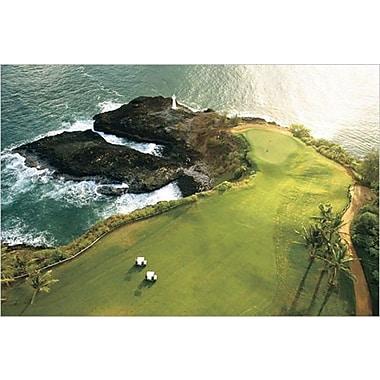 Golf Course, Hawaii Coast Poster, 24