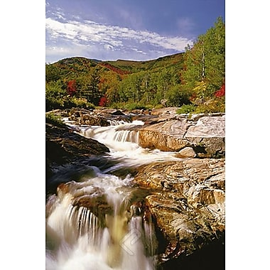 Ausable River, New York Poster, 24