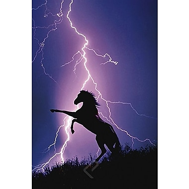 Lightning and Silhouette of Horse Poster, 24