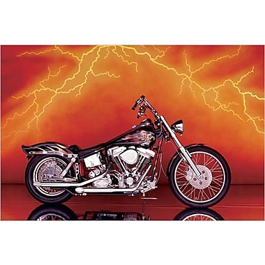 Motorcycle Custom, 1997 Poster, 24