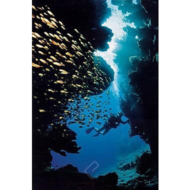 Scuba Diving Poster, 36
