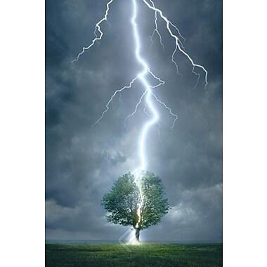 Lightning Striking Tree I Poster, 24