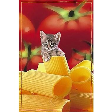 Italian Kitten Poster, 24