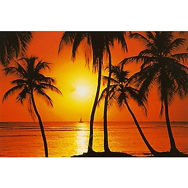 Tropical Sunset Poster, 24