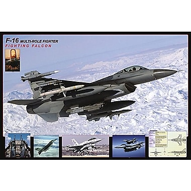 F- 16 Fighting Falcon Poster, 24