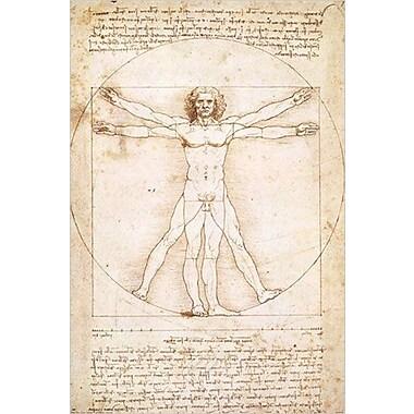 Da Vinci - Leonardo Poster, 24