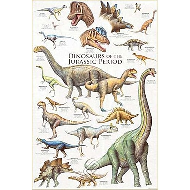 Dinosaurs - Jurassic Period Poster, 24