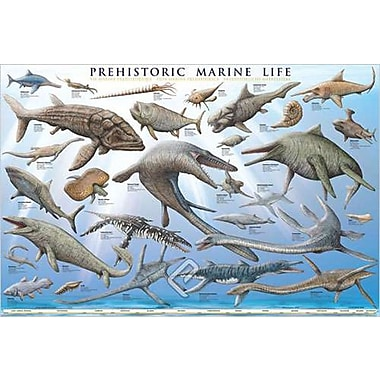 Prehistoric Marine Life Poster, 24