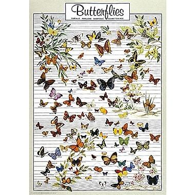 Butterflies Poster, 26-3/4