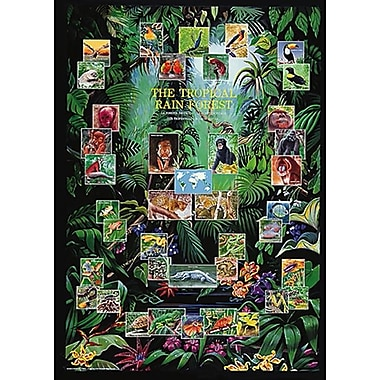 The Tropical Rain Forest Poster, 26 3/4