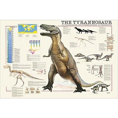 The Tyrannosaur Poster, 24