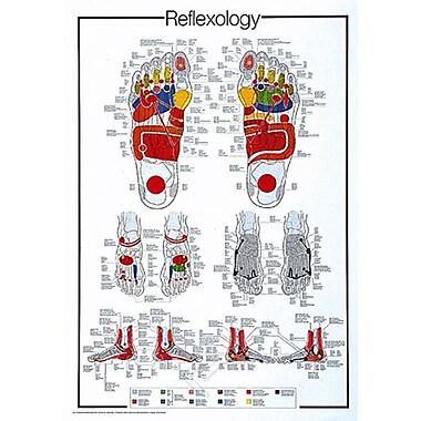 Reflexology Poster, 26.75