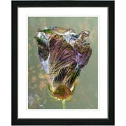 Studio Works Modern ''Autumn Amber Bud'' by Zhee Singer Framed Graphic Art in Green; Black
