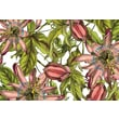 October Hill Passion Large Paper Placemat (Set of 40)