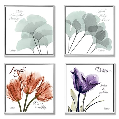 Stupell Industries X-Ray Floral Inspiration 4 Piece Square Graphic Art Wall Plaque Set