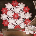 Xia Home Fashions Candy Cane Poinsettia Embroidered Cutwork Holiday Placemat (Set of 4)