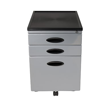Calico Designs 2-Drawer Metal and Plastic File Cabinet, Silver, Letter/Legal (51102BOX)