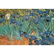 Ace Framing Vincent Van Gogh in.Garden Of Irisesin. Framed Poster, 24in. x 36in.