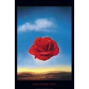 Pyramid America™ Salvador Dali The Rose Poster