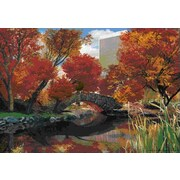 Ace Framing Central Park Seasons 3D Poster, Mini