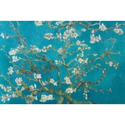 Ace Framing Vincent Van Gogh Almond Blossom San Ramy 1890 Framed Poster, 24 x 36