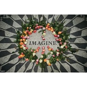 Ace Framing Imagine Framed Poster, 24 x 36