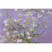"Ace Framing ""Almond Blossom Lavender"" Framed Poster, 24"" x 36"""