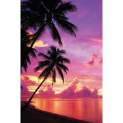 Ace Framing Tahitian Sunset Framed Poster, 36 x 24
