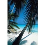 Ace Framing Palm View Hammock Framed Poster, 36 x 24