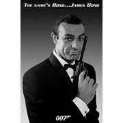 Help on dissertation james bond