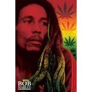 Pyramid America™ Bob Marley Dreads Poster