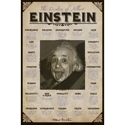 "Ace Framing ""Albert Einstein Quotes"" Framed Poster, 36"" x 24"""