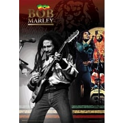 Ace Framing Bob Marley 3D Poster, Large
