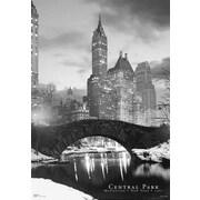 Ace Framing Central Park Bridge 3D Poster, Large