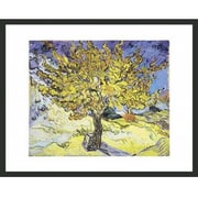 Frames By Mail 'Mullberry Tree' by Vincent Van Gogh Framed Painting Print