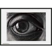 Frames By Mail 'Eye' by M.C. Escher Framed Painting Print
