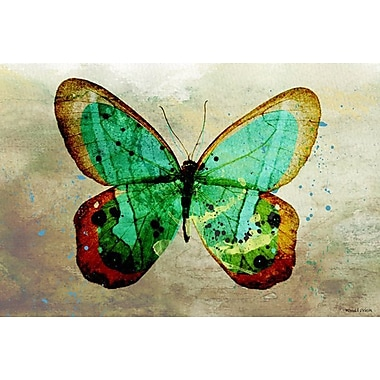 Maxwell Dickson Butterfly Graphic Art on Wrapped Canvas; 18'' H x 24'' W