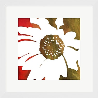 Evive Designs Peace Flowers IV by James Burghardt Framed Painting Print