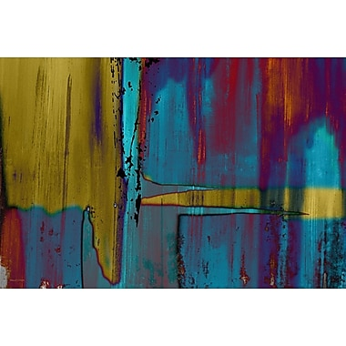 Maxwell Dickson Negatives Graphic Art on Canvas; 16'' H x 20'' W