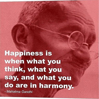 Evive Designs Gandhi - Happiness Quote Graphic Art on Wrapped Canvas