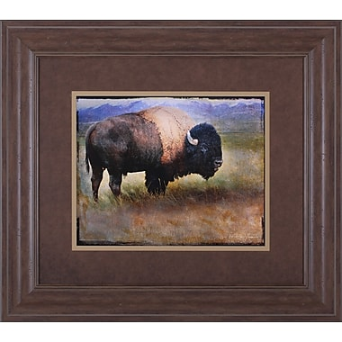 Art Effects Bison Portrait II by Chris Vest Framed Photographic Print