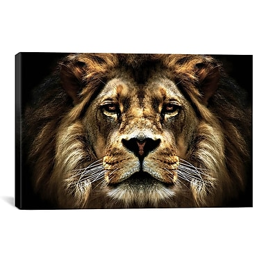 iCanvas 'The Lion from SD' Smart Painting Print on Canvas; 8'' H x 12'' W x 0.75'' D
