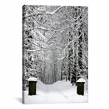 iCanvas Winter Time Photographic Print on Canvas; 12'' H x 8'' W x 0.75'' D