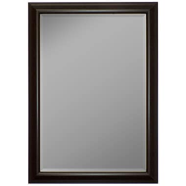 Second Look Mirrors Glossy Silver Smoked Black Wall Mirror; 58'' H x 22'' W