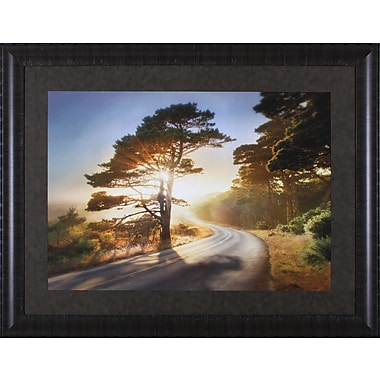 Art Effects Too Much to Ask by William Vanscoy Framed Photographic Print