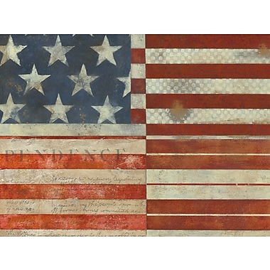 Art Effects Flag of Independence by Norman Wyatt, Jr. Painting Print on Canvas